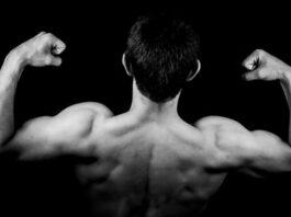 Muscler grand dorsal : quelles sont les astuces pour y arriver?